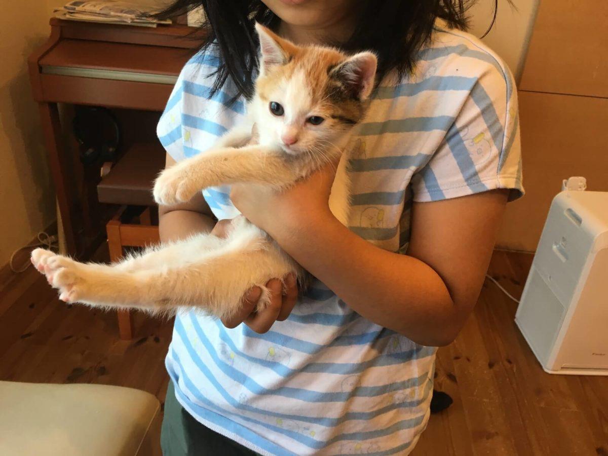 初めての抱っこ!