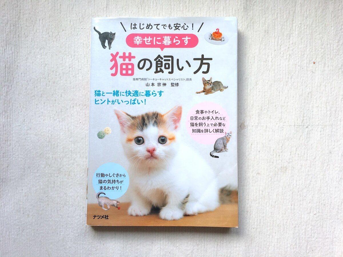 幸せに暮らす猫の飼い方
