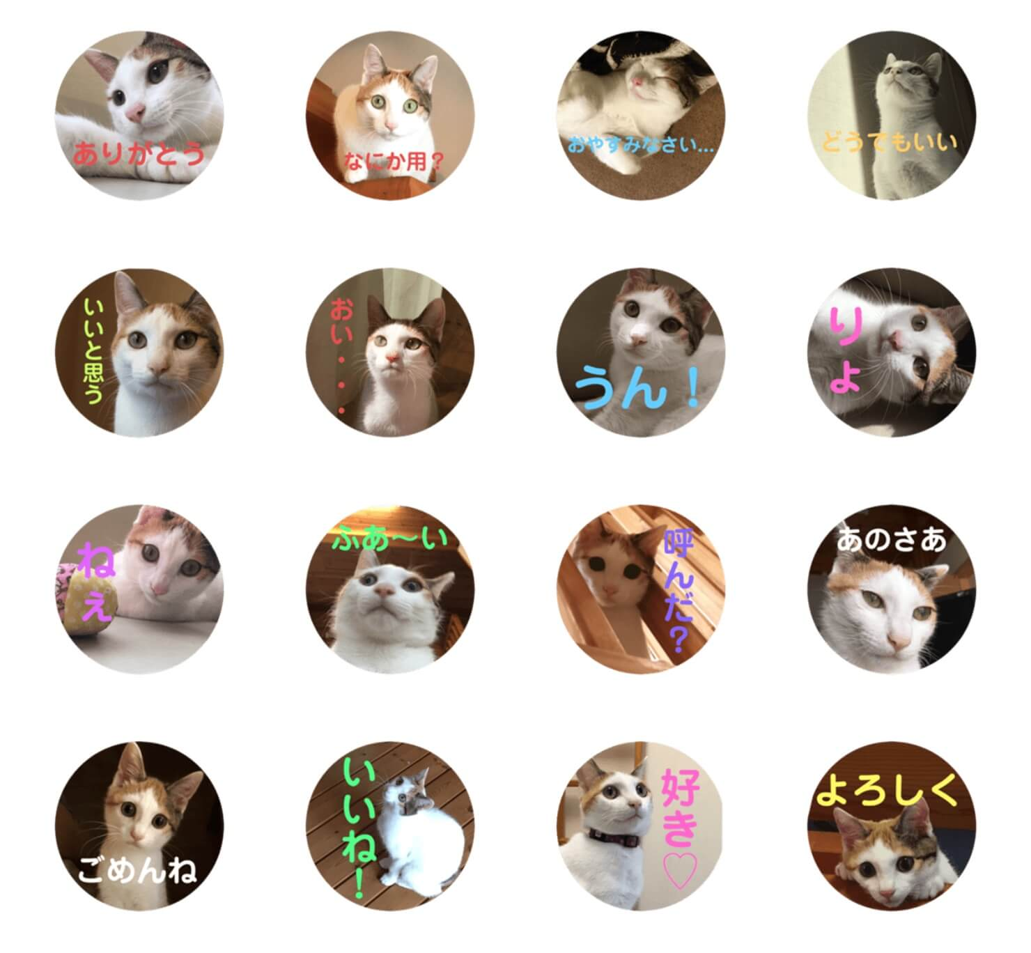 LINEスタンプ第2弾「三毛猫よろずスタンプ」が公開されました!