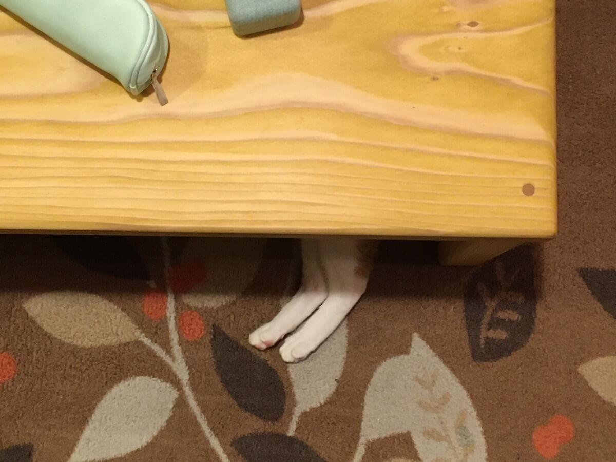 頭隠して尻隠して足隠さない