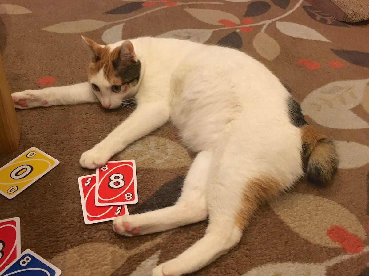 今度はみんなでカードゲームをして遊びました