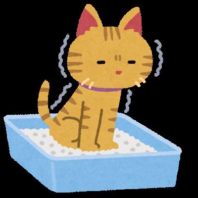 猫がうんちを片付けない時があるのはなぜ?