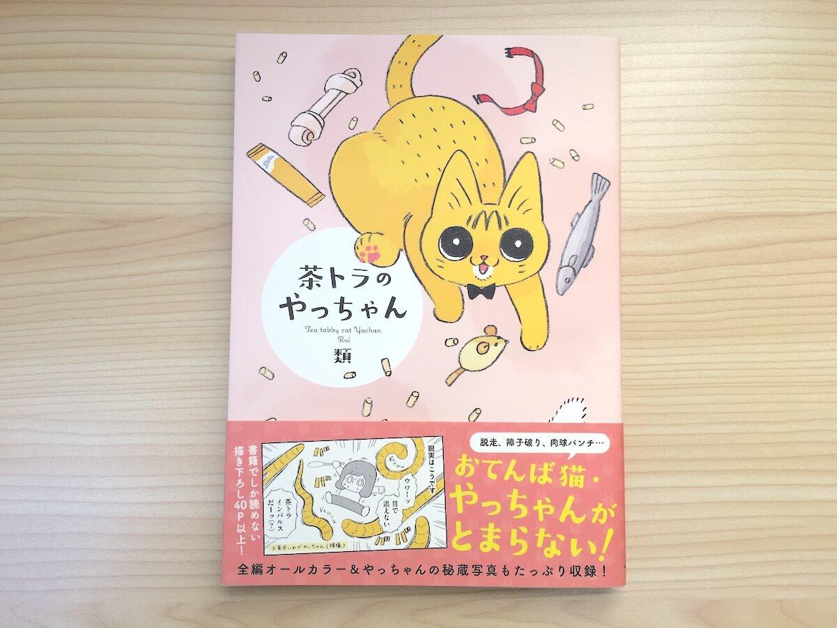 笑いあり涙ありの猫マンガ『茶トラのやっちゃん』を読みました