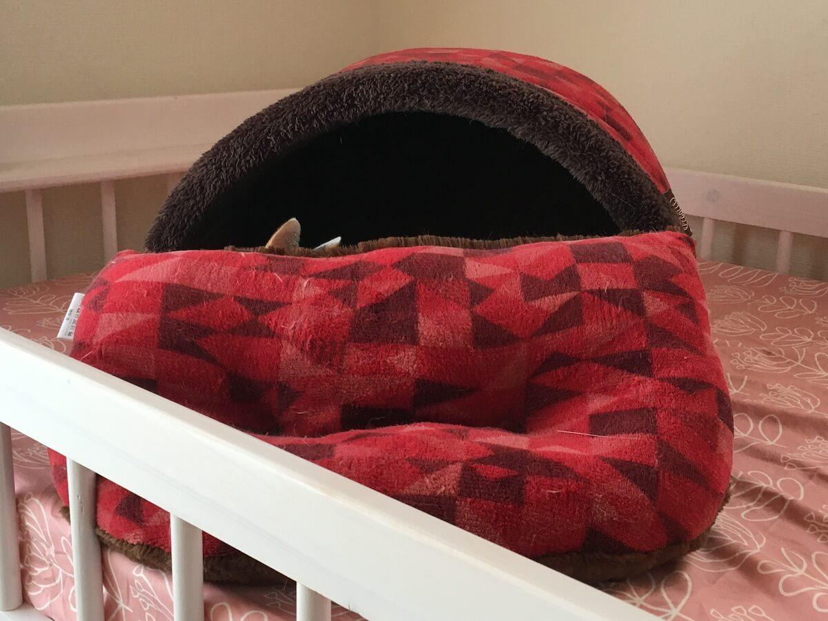 ベッドを自分好みに組み替えていた猫さん