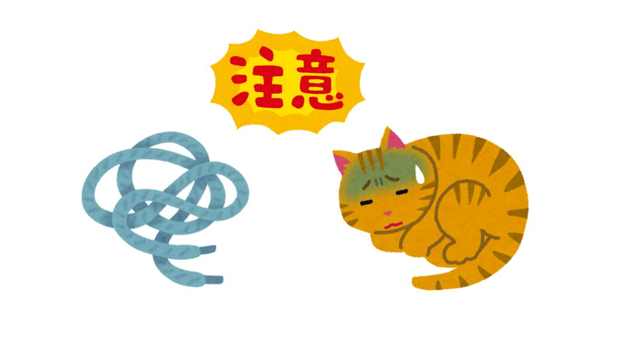 紐の誤飲事件勃発!猫に紐は危険なので気を付けましょう!